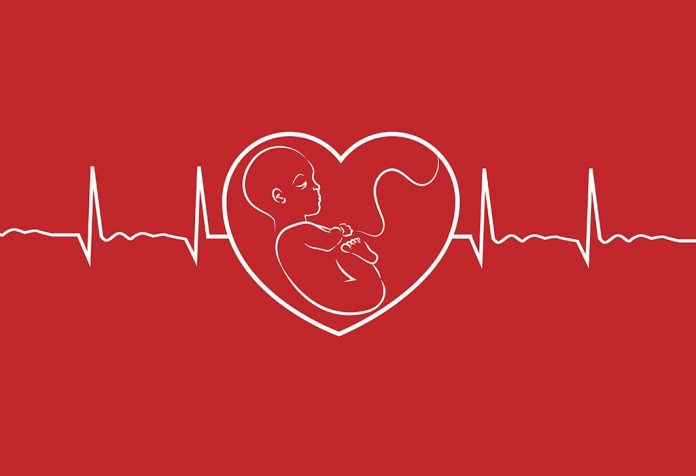 No Heartbeat at 6 Weeks Ultrasound - FAQs
