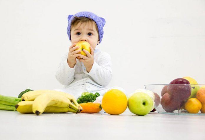 baby diet food plan