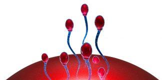 वंध्यत्वावरील उपचारासाठी इंट्रायुटेरिन इन्सेमिनेशन (आय.यु.आय.) प्रक्रिया