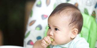 7 Month 2 Week Old Baby Food Chart