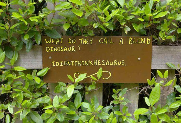 20 Funny Dinosaur Jokes For Kids