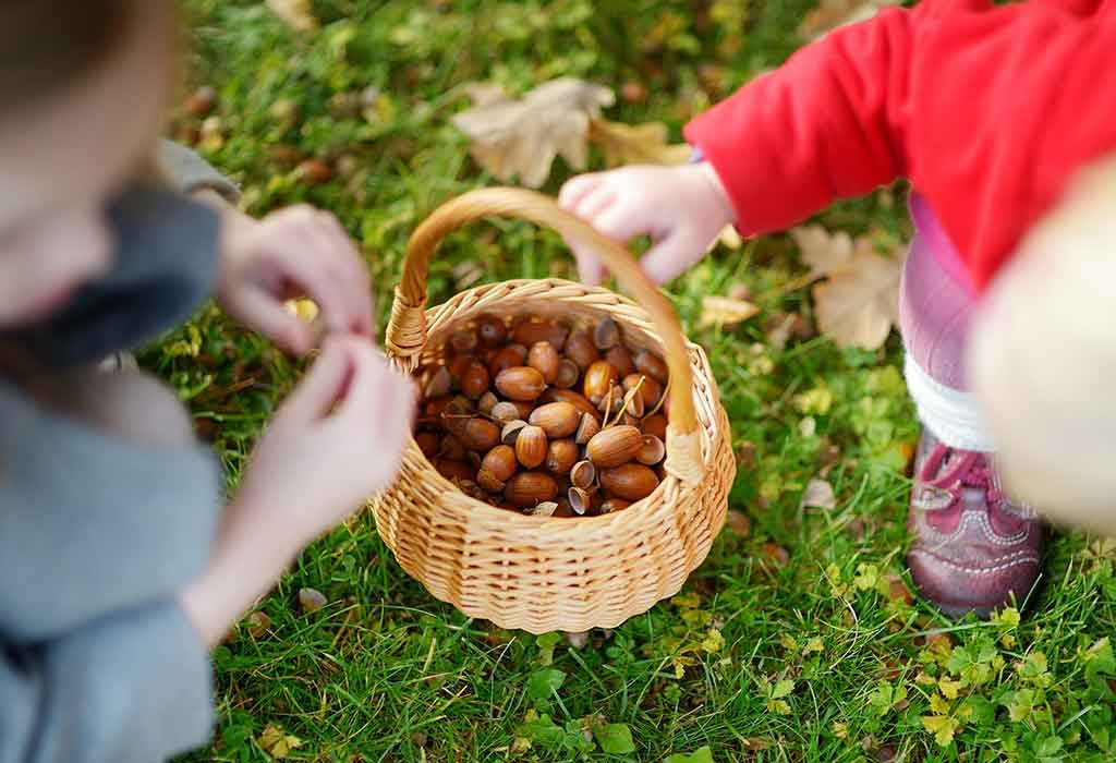 FIVE LITTLE ACORNS