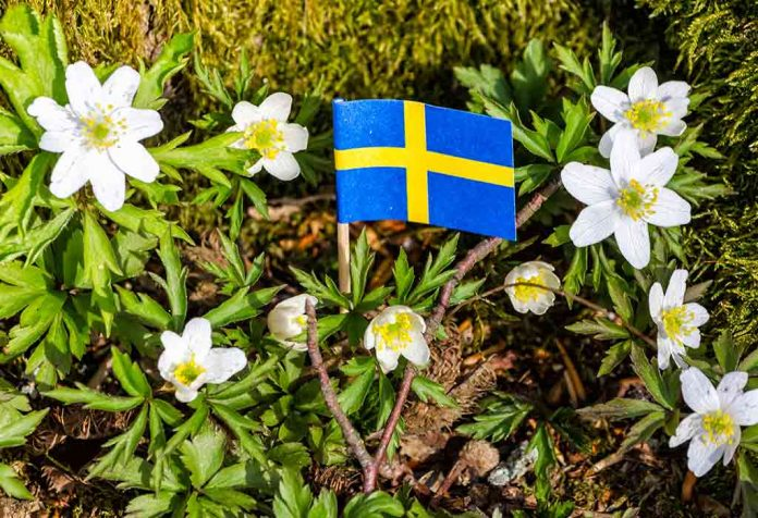 Tiny flag of Sweden amidst Swedish spring flowers