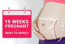 Pregnancy Week-19