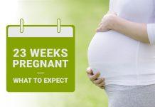 Pregnancy Week-23