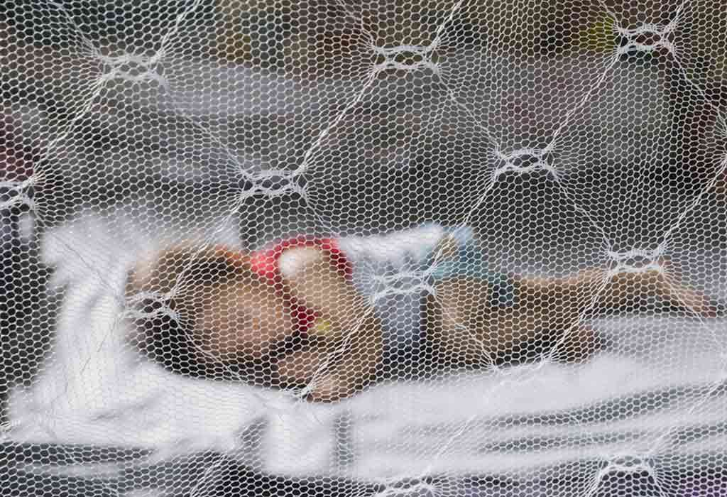 Baby sleeping inside a mosquito net