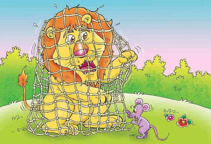 शेर और चूहे की कहानी हिंदी में