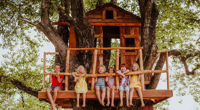 kids on a treehouse