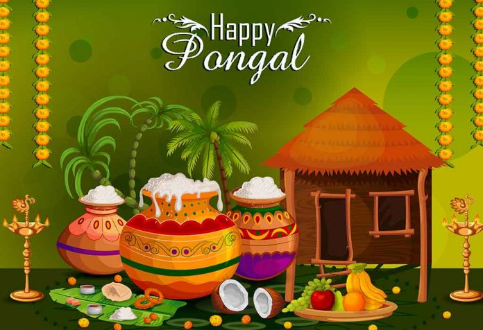 Beautiful Pongal Wishes, Messages & Quotes for Your Family and Friends
