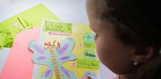 Everything That Is Taught in the First Grade Science Curriculum