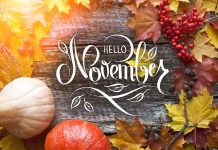 Important Days to Observe and Celebrate in November