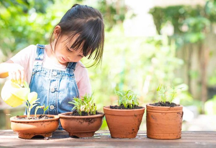 Fascinating Information About Parts of a Plant for Kids