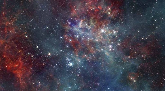 Interesting Facts About Stars for Kids