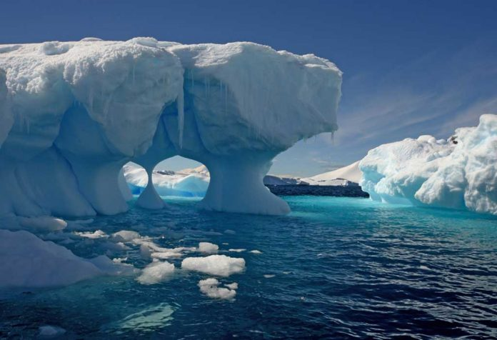 Interesting Facts About Antarctica for Kids