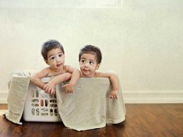 50 Best Quotes About Twins