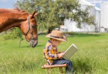 10 Interesting Horse Books For Kids
