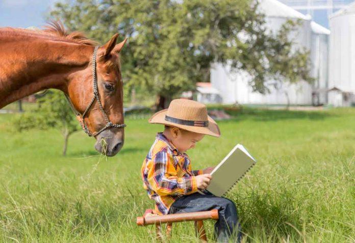 10 Interesting Horse Books For Kids