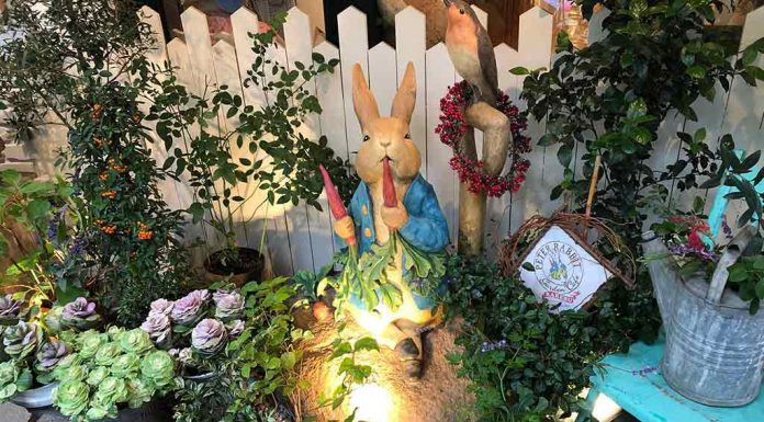 The Story of Peter Rabbit for Kids