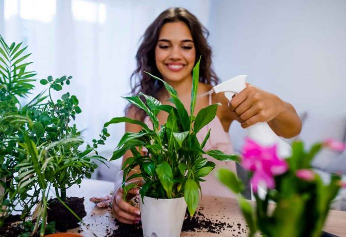 TOP 20 PLANTS THAT ARE HARD TO KILL