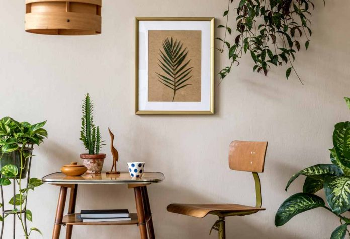 EASY CARE HOUSEPLANTS THAT DO WELL IN LOW LIGHT