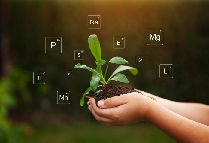 SIMPLE SOIL TESTS THAT IDENTIFY YOUR GARDEN'S PROPERTIES AND PROBLEMS