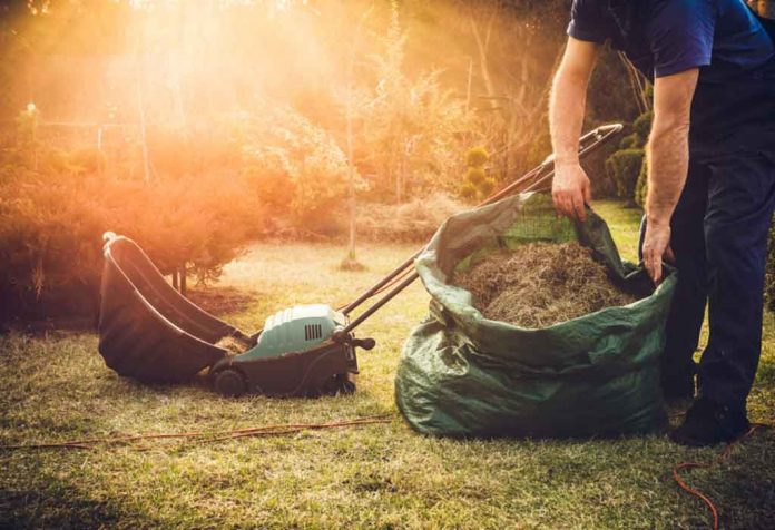 LAWN DETHATCHING AND TIPS TO KEEP YOUR LAWN GRASS HEALTHY