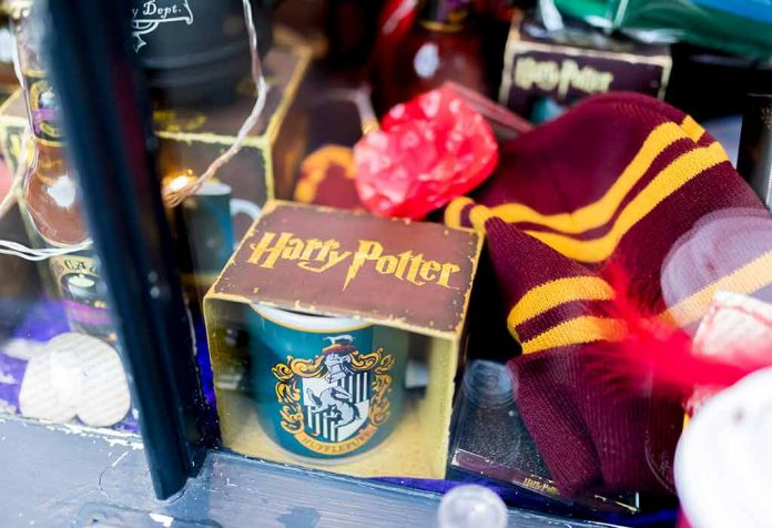 40 IMAGINATIVE AND UNIQUE HARRY POTTER GIFTS TO STUPEFY POTTERHEADS
