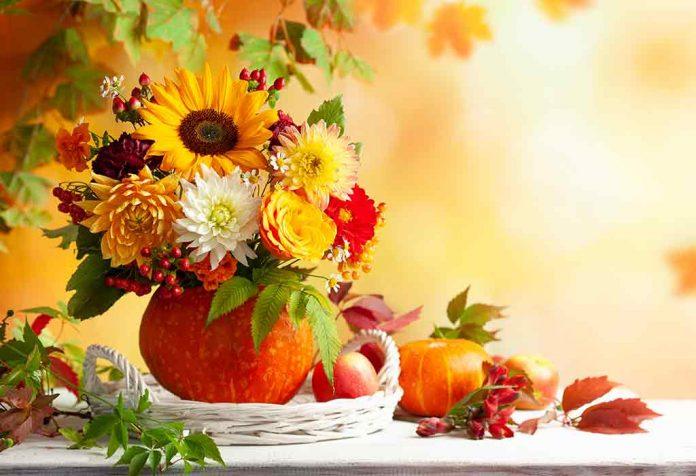 No Carve Pumpkin Decorating Ideas That Anyone Can Make