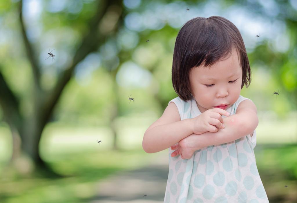 बाळांना डास चावल्यास त्यावर १० नैसर्गिक उपाय